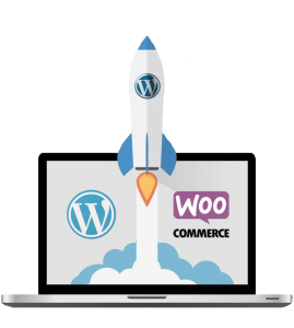 WordPress Speed Optimization