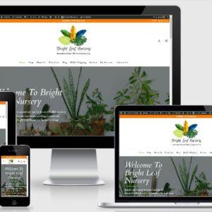 Plant Nursery / Indoor Plant - eCommerce