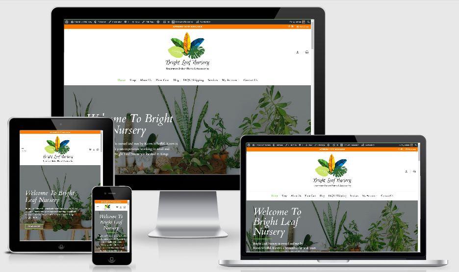 Indoor Plants | eCommerce